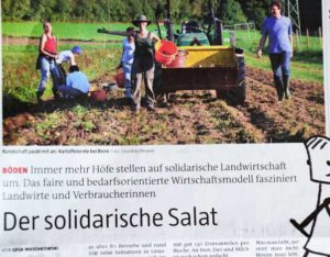 Der Solidarische Salat