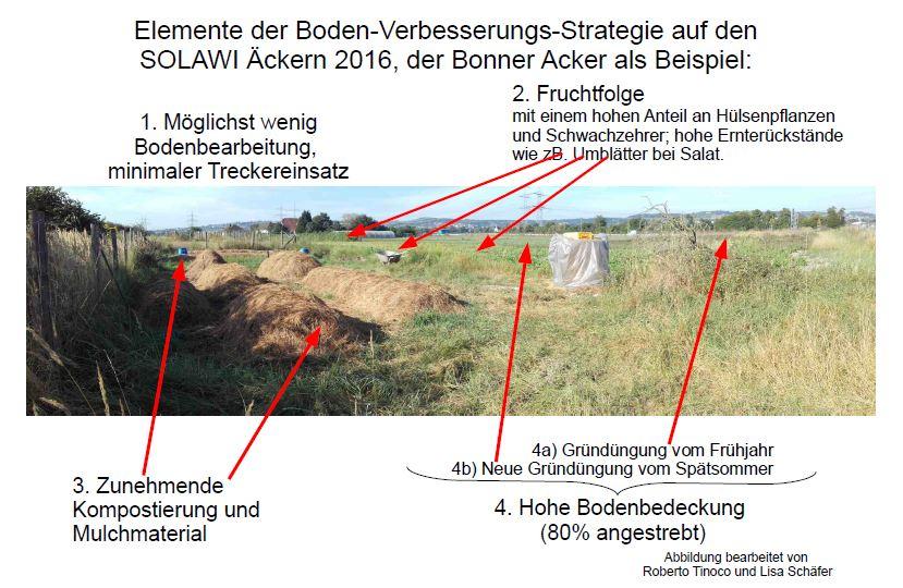 Feld mit Kompost und Gründüngung