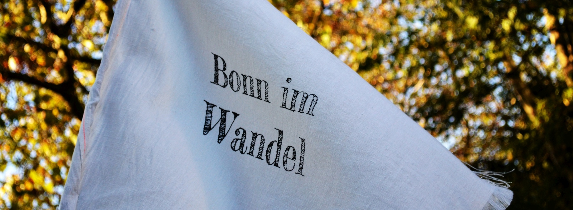 Bonn im Wandel Fahne im Wind