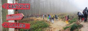 Links: Wegweiser im Hambacher Forst, Rechts: Menschen betreten den Wald von Seite der Abbruchkante