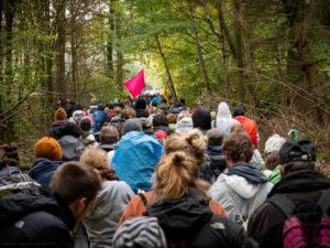 Viele Aktivistinnen auf einem engen Waldweg