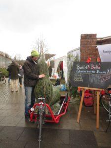 Weihnachtsbaum wird gebündelt und verladen