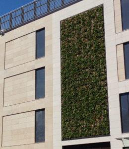 Osterüberraschung: Bonns grüne Seele entdeckt