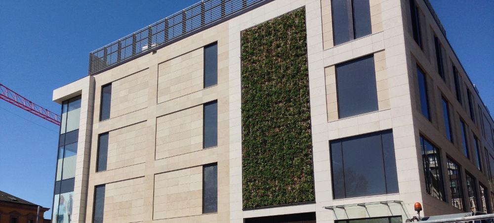 Begrünung an der Fassade des Primark-Neubaus