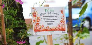 Blühschild von Bonn blüht und summt auf eine bunten Baumscheibe