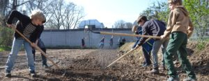 Schülerinnen bereiten Boden für Saatgut vor