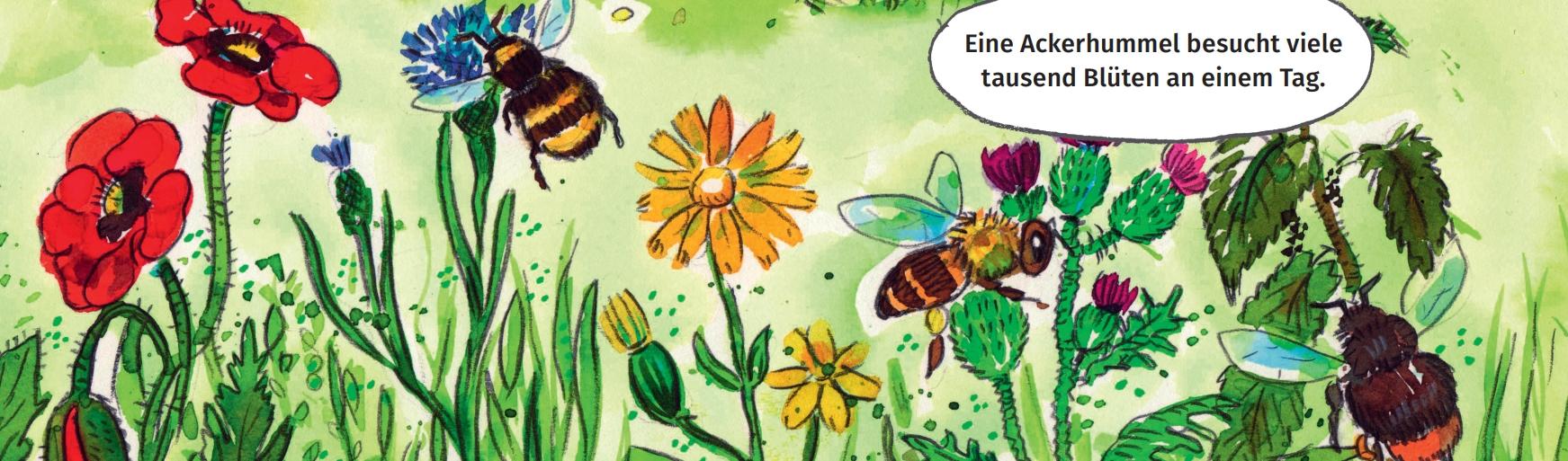 Bunte Blüten mit Insekten