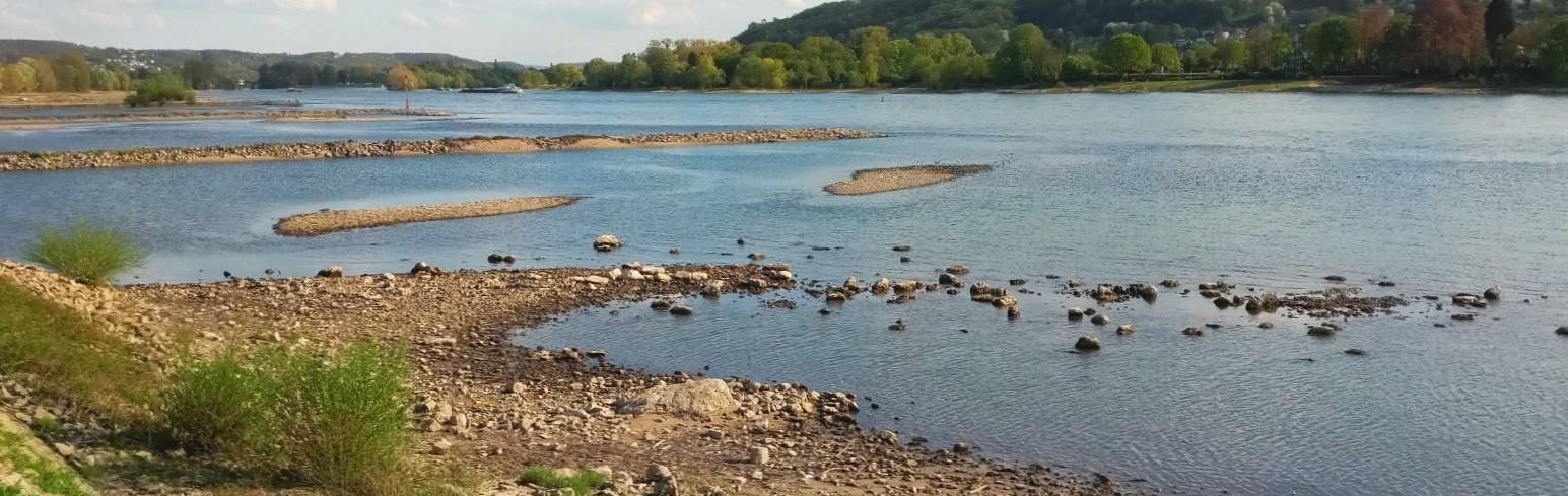 Niedrigwasser am Rhein bei Königswinter